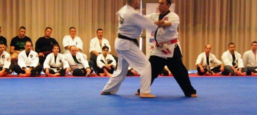 kelemen ryu ju jitsu seminar eger 7/2016