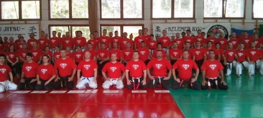 סמינר בהונגריה יולי 2013
